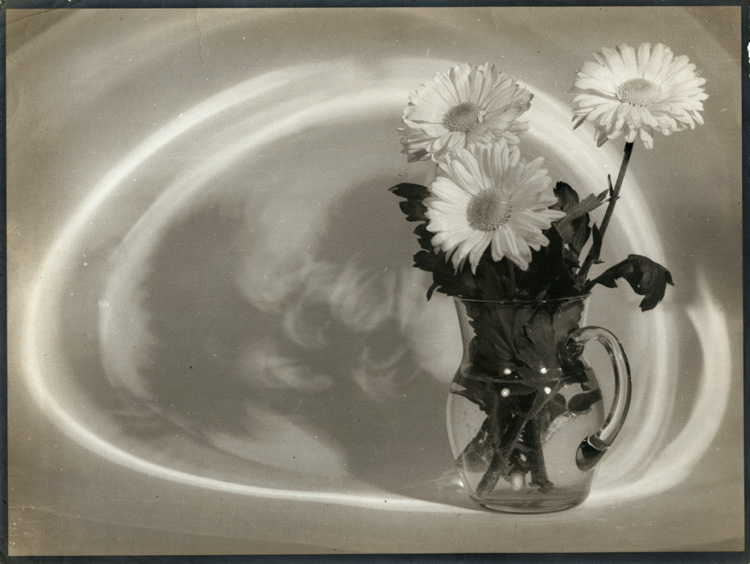 Raoul Bariaux - Still Life with Pitcher and Daisies