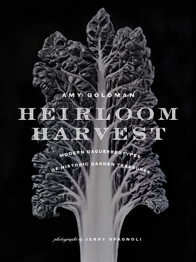 Jerry Spagnoli - Heirloom Harvest: Modern Daguerreotypes of Historic Garden Treasures
