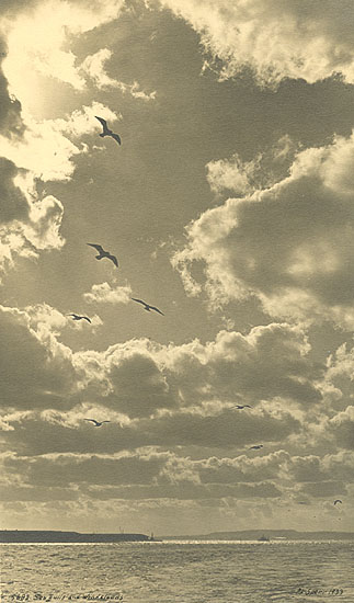 Percy Loomis Sperr - Seagulls and Wind Clouds