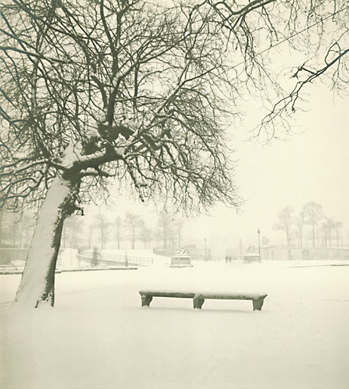Marcel Bovis - Tuileries Gardens, Paris, in Snow